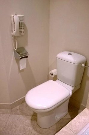 Hyatt Regency Belgrade: Phone next to toilet, however no toilet brush :)