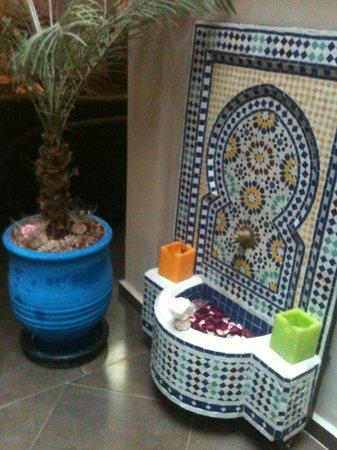 Riad Akiba : magnifique