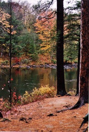 Site des Chutes de Rawdon automne