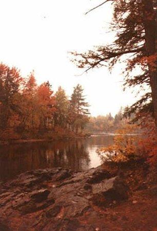 Dorwin Falls Park : Site des Chutes de Rawdon automne