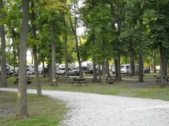 Gettysburg Campground: Shade trees are abundant