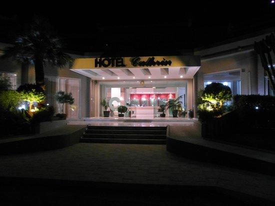 Cathrin Hotel: Вход