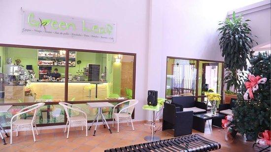 Green Leaf Cafe: Green Leaf Coronado, across of the Machetazo.