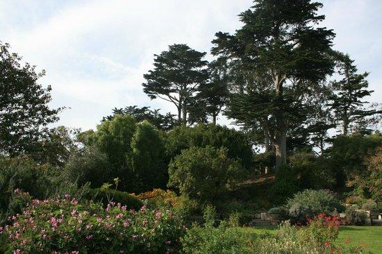 San Francisco Botanical Garden: Botanical Garden