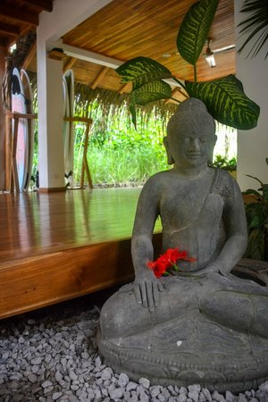 Lucero Surf Retreats: Yoga Facility