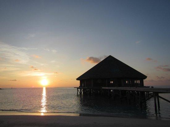 Vilamendhoo Island Resort & Spa: Рассвет