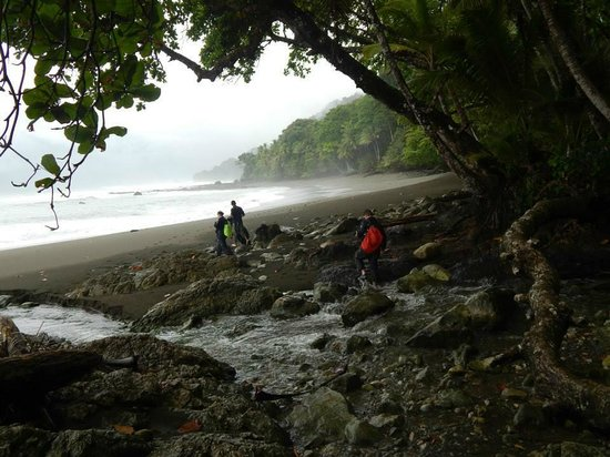 Osa Green Travel : Corcovado beach