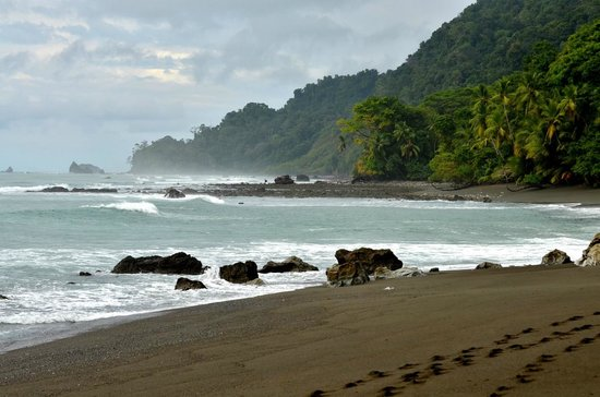 Osa Green Travel : Wild beach with wreck