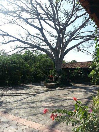 Hacienda el Divisadero: Se respira tranquilidad, se admira la naturaleza y la belleza