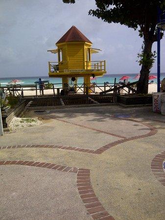Dover, Barbados: owner