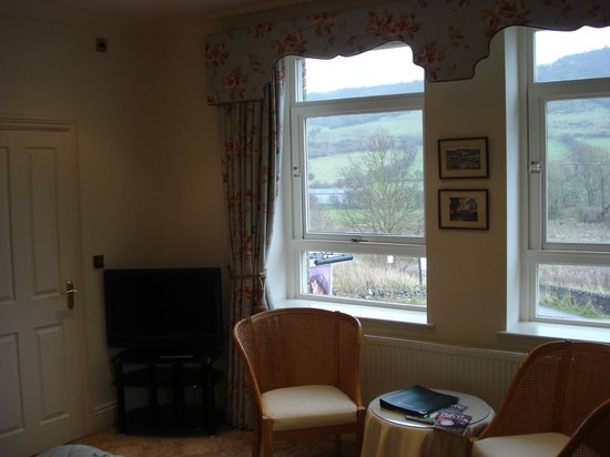 Samuel Fox Country Inn : The TV and view