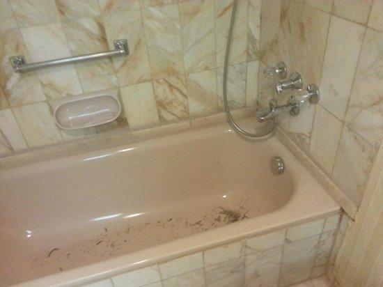 Regency Palace Amman: shredded wood in the bathtub??!
