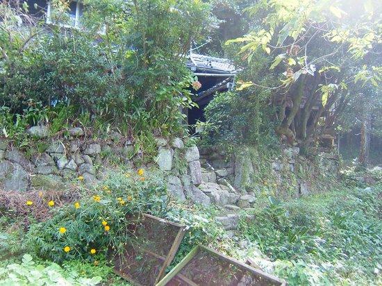 Museum Mori: 隣の民家屋敷