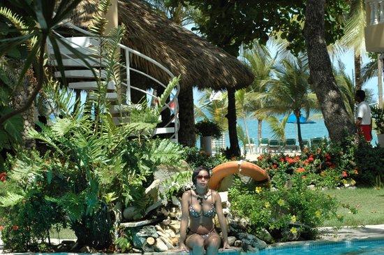 Hotel Villa Taina : Piscina
