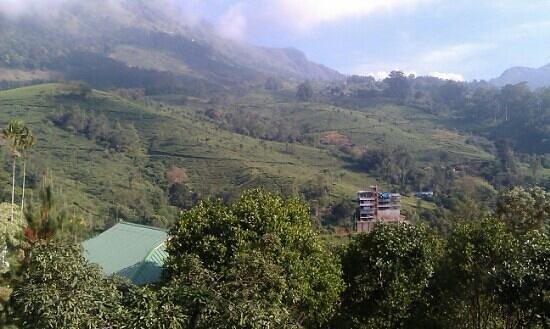 Nest Resort: hotel view