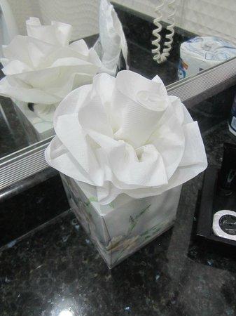 Riande Aeropuerto: Cute tissue flower