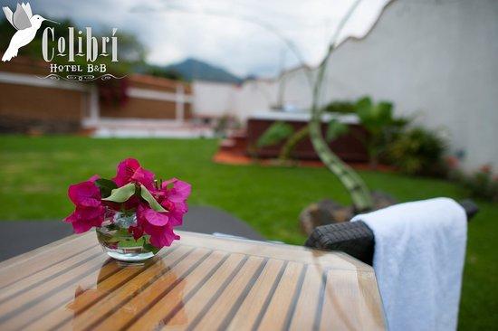 Colibri Hotel B&B: Jardín