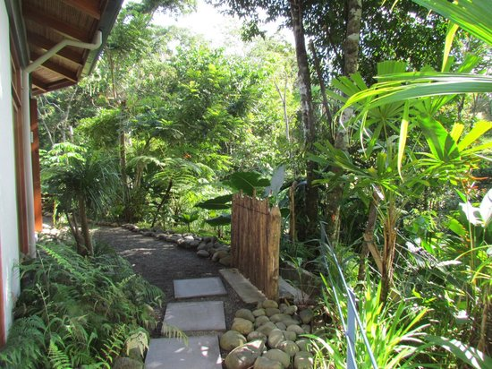 Prana Rainforest Retreat : Outdoor Area