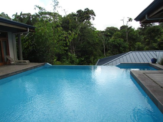 Prana Rainforest Retreat : Infinity Pool at Mark & Jon's House