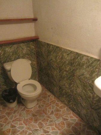 Hotel Vista Rio: Musty Bathroom