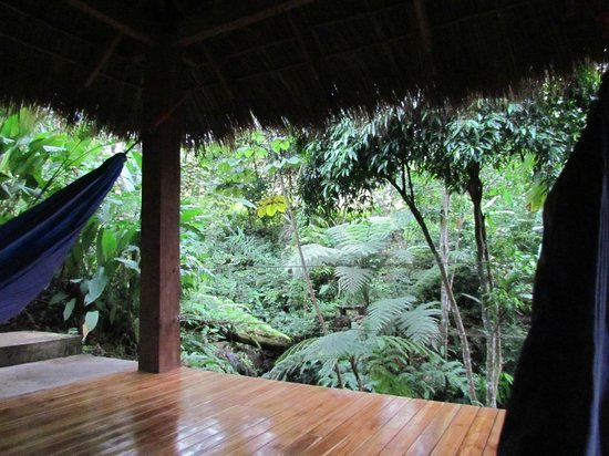 Prana Rainforest Retreat: A wonderful place to relax and read a book or take a nap.