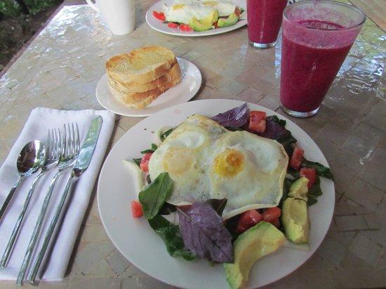 Prana Rainforest Retreat: Breakfast.