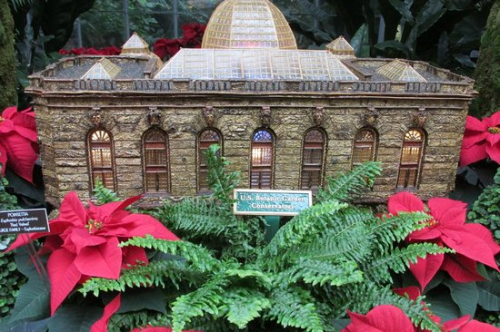 United States Botanic Garden: one of the leaf and twig scale models