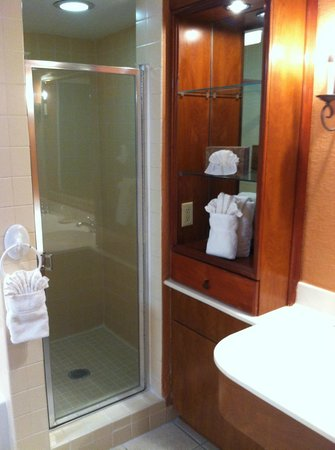 Palm Beach Shores Resort and Vacation Villas: separate shower