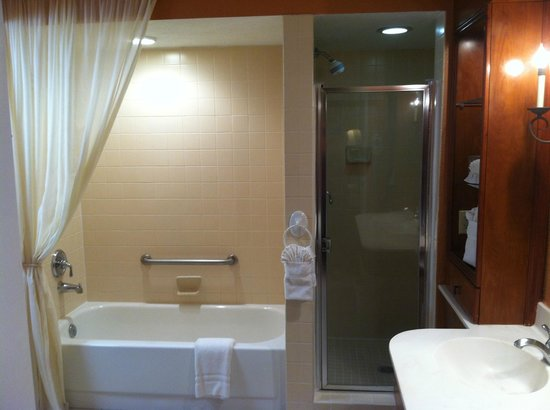 Palm Beach Shores Resort and Vacation Villas : shower and tub are side-by-side