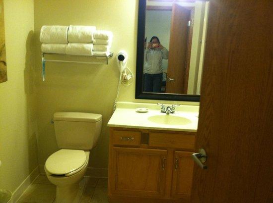Timber Ridge Lodge & Waterpark : Bathroom