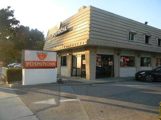 Japanese Restaurant In Cupertino California