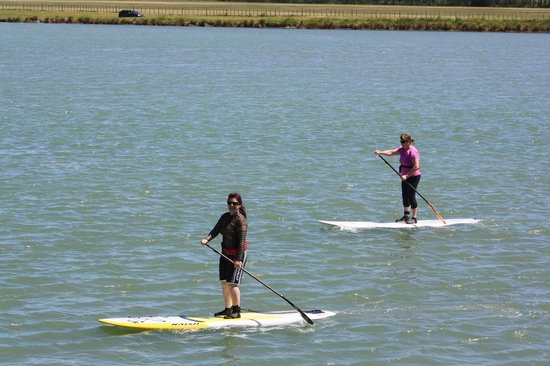 Raglan Scenic Tours: paddleboarding