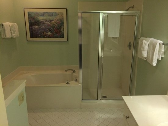 Egret Point by Spinnaker Resorts: bathroom, jacuzzi not visible