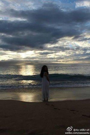 Sheraton Maui Resort & Spa: great beach of Sheraton Maui