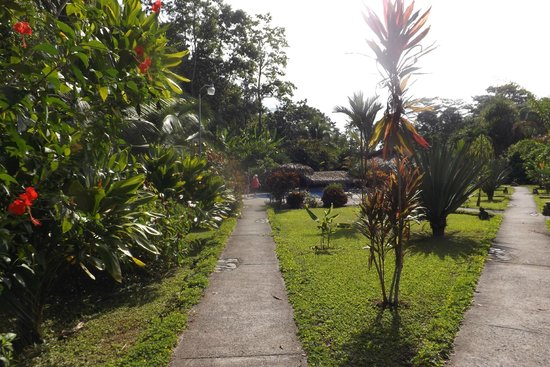 Suizo Loco Lodge Hotel & Resort: grounds