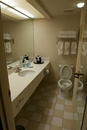 Hampton Inn New Orleans - St Charles Ave / Garden District: Bathroom