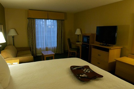 Hampton Inn New Orleans - St Charles Ave / Garden District : View of the room