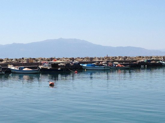 Assos Behram Hotel: Small harbor in front of hotel
