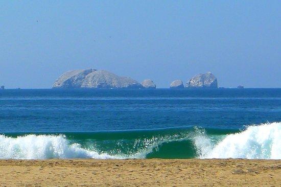 Las Palmas Beachfront Villas : stunning view