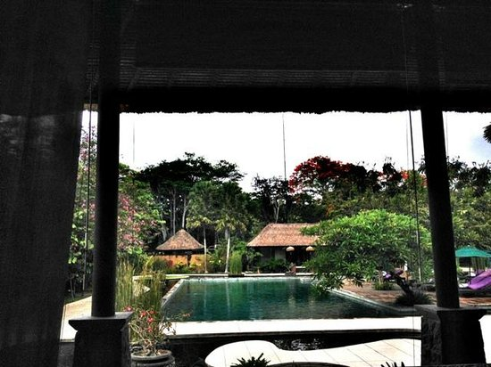 Amarterra Villas Bali Nusa Dua - MGallery Collection : from our breakfast table