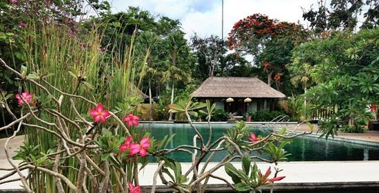 Amarterra Villas Bali Nusa Dua - MGallery Collection : a view from the pool - fitness/spa