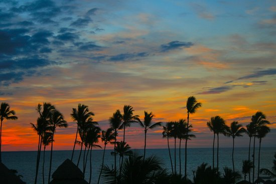 Be Live Collection Punta Cana : вид из номера(рассвет)