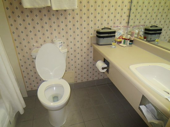 Ramada London: Bathroom