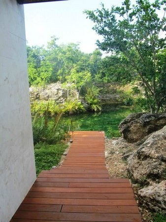 "Rosewood Mayakoba: Path down from my room to the ""creek"""