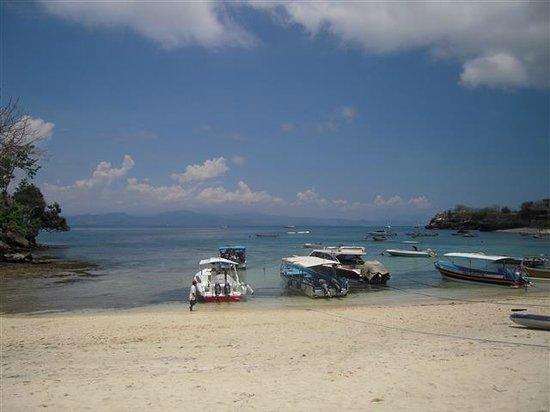Alam Nusa Huts and Spa: Mushroom Beach/Bay
