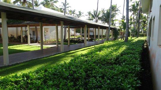 Sirenis Punta Cana Resort Casino & Aquagames: Авеню №3