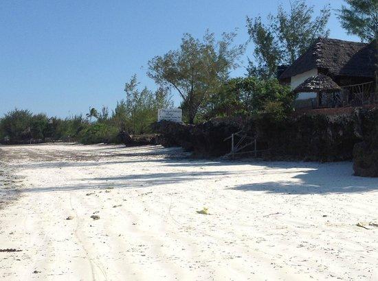 Mbuyuni Beach Village: the beach