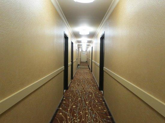 BEST WESTERN Plus Inner Harbour : Hallway