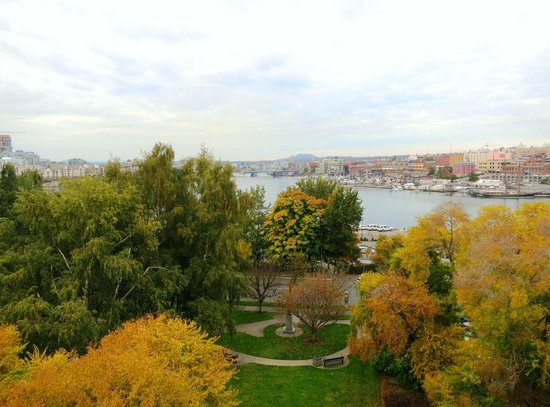 BEST WESTERN Plus Inner Harbour: Queen Corner Room  - Balcony View 5