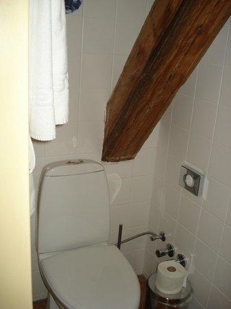 Hotel Gutenbergs: Ванная комната.